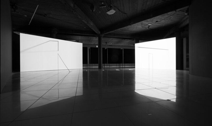 Современное искусство в PERMM: выставка Александра Бродского